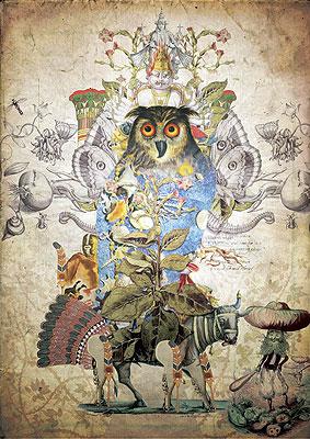 Illustration by Luis Toledo