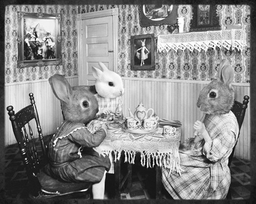 Rabbits at Tea